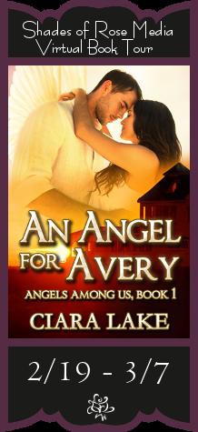 SOR An Angel for Avery VBT Banner