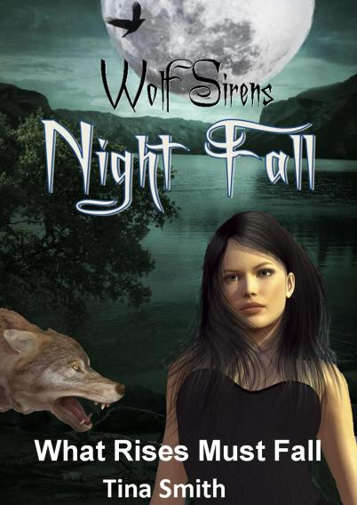 aaaNight fall cover smashwords